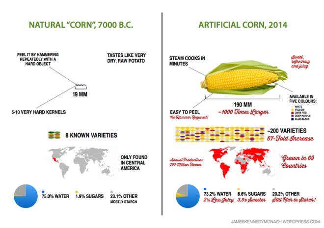 Corn Evolution (James Kennedy)
